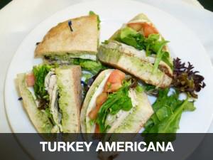Turkey Americana